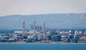 Avis du réseau sur le projet d'exploitation d'une bioraffinerie par Total sur le site de la Mede